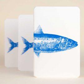 Notebook <br>Sardinha / <em>Sardine</em>
